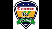 Liga Nacional Juvenil